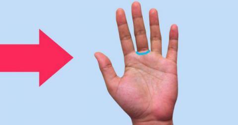 Lo que encierra el anillo de venus. ¿Posees esta línea en tu mano? ¡Descubre lo que significa!