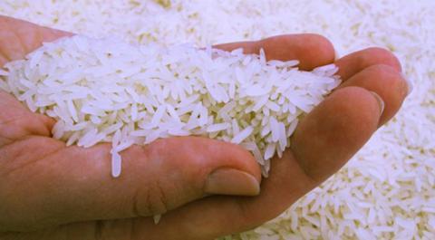 Coloca arroz en frasco de cristal 6 granos de pimienta y observa como cambia tu vida.!!