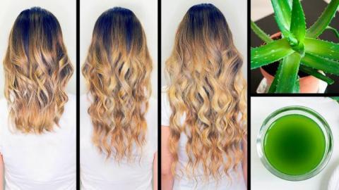 Preparé aceite de áloe vera y ahora mi cabello crece el doble de rápido