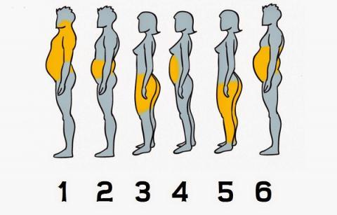 Cómo eliminar la grasa de cada parte del cuerpo