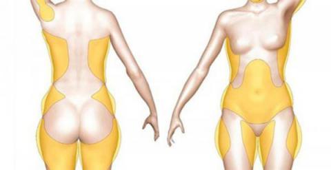 Como restaurar las hormonas que se encargan de quemar la grasa de tu cuerpo