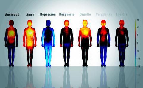 Efectos negativos de las emociones y pensamientos: Cómo las emociones afectan a nuestro organismo