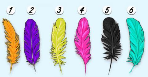 Primero elige una pluma, y después te revelaremos cosas que están ocultas en tu personalidad…