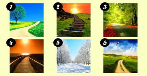 Escoge un camino y descubre los aspectos más importantes de tu vida