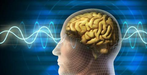 """¿Por qué la la mente humana ignora el segundo """"la""""?"""
