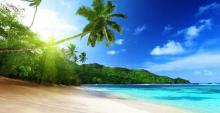 ¿Qué llevarías a una isla desierta?