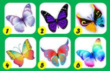Test de las Mariposas