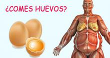 Los médicos revelan: Esto sucede en su cuerpo cuando comienza a comer dos huevos por día