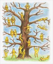 Descubre tu estado emocional ¿En qué parte del árbol estás?