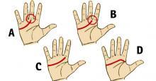La línea de la vida de tus manos revela más de lo que imaginas sobre tu personalidad