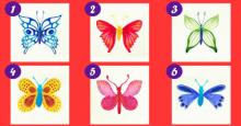 Elige la mariposa que mas te guste y descubre algunos aspectos de tu vida y tu personalidad