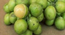 Esta fruta detiene el insomnio y aumenta la función cerebral después de unos pocos