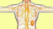 Limpia tu sistema linfático y evita la fibromialgia, la obesidad, la hinchazón y más!
